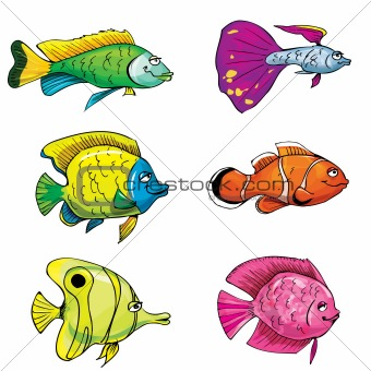 Cartoon set of tropical fish