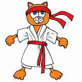 Cartoon cat in karate outfit