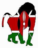 Baboon Kenya