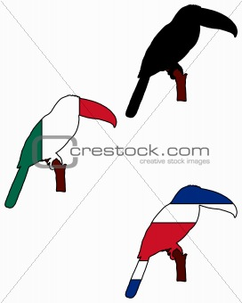 Toucan flags