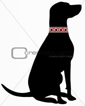 Dog tick collar