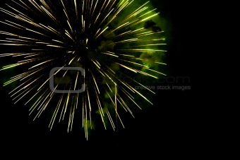 A burst of golden- green  fireworks against a night sky.