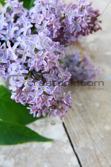 bouquet of violet lilac  flowers on a wooden table