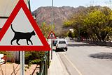 Triangular road sign warning cats are crossing