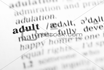 adult (the dictionary project)