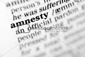 amnesty (the dictionary project)