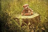 Small little bears on old wooden stump in grass