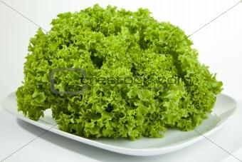 green Salat