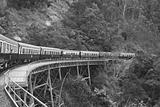 Kuranda Train to Cairns