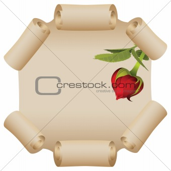 Old scroll with roses