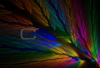 Parrot Colored Feather Fractal