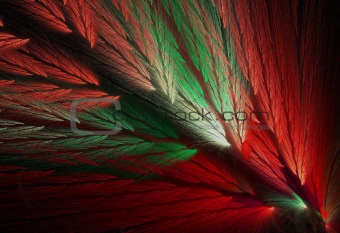 Parrot Feather Fractal in Christmas Colors