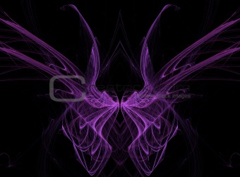 Purple Fractal Butterfly Wings on Black Background