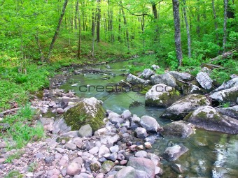 Baxters Hollow State Natural Area