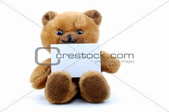 isolated teddy with blank sheet