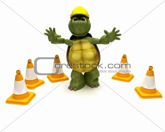 tortoise builder with hazard cones
