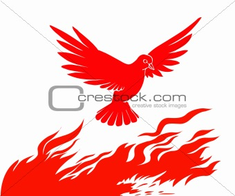 vector silhouette of the bird on fire on white background