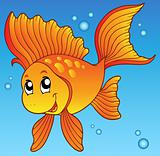 Cute goldfish in water
