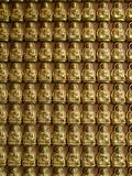 Many statue of gold Buddha