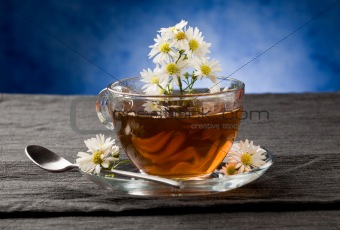 Chamomile with Marguerite