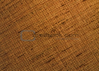 Backlite linen fabric close-up background