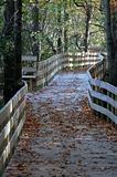 Walkbord in Autumn