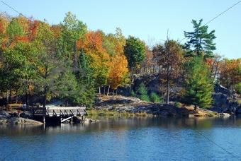 Autumn's landscape