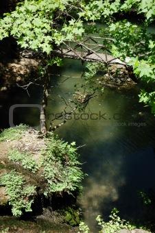 Bridge lake forest