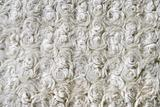 curly wool texture