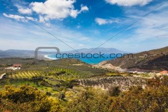 Olive fields near the Mediteranean cost on Crete