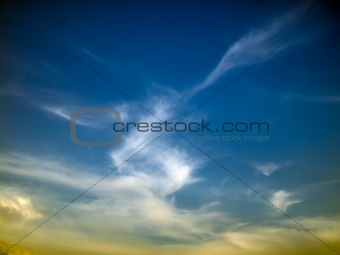 Abstract White dragon cloud