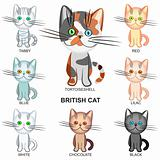 vector set of the British Short hair cats of various colors