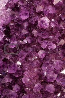 Purple Gems