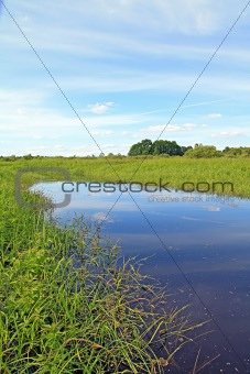 small lake on field