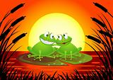 Frog in love
