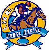 horse and jockey racing