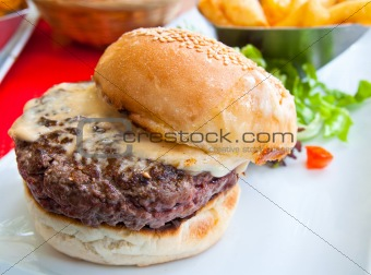 American cheese burger