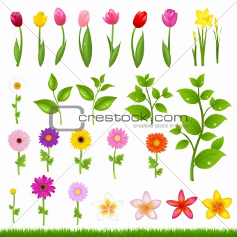 Flower Borders - 8