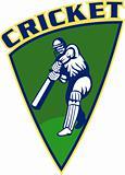 cricket sports batsman batting shield