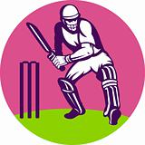 cricket batsman batting wicket
