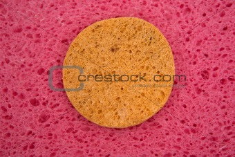 Porous pink structure with yellow circle