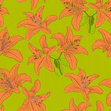 Seamless  background with flower lily.