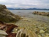 Stony sea coast