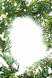 Frame from christmas branch