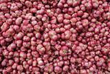 Abundance of red onions