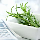 Fresh rosemary in a white bowl