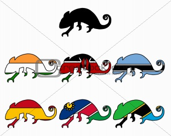 Chameleon flags