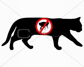 Cat flea prohibited