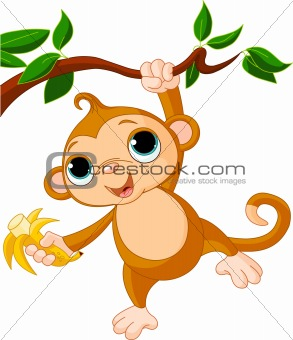 Baby monkey on a tree