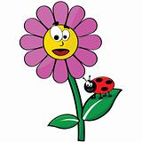 Flower and ladybug